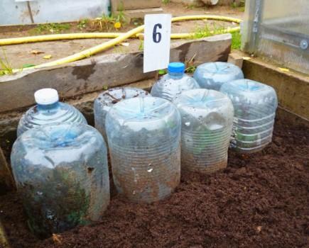 колпаки, вырезанные из пластиковых бутылок