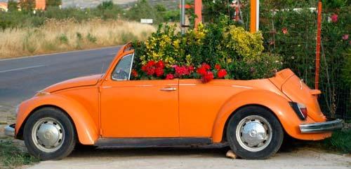 Если убрать крышу машины, можно заполнить цветами весь салон